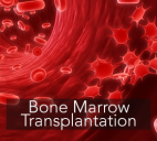 Bone Marrow Transplant in India