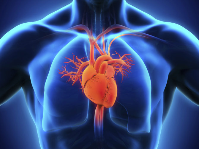 Best Open heart Surgery in India